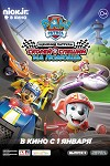 Paw Patrol: Ready Race Rescue (2020)